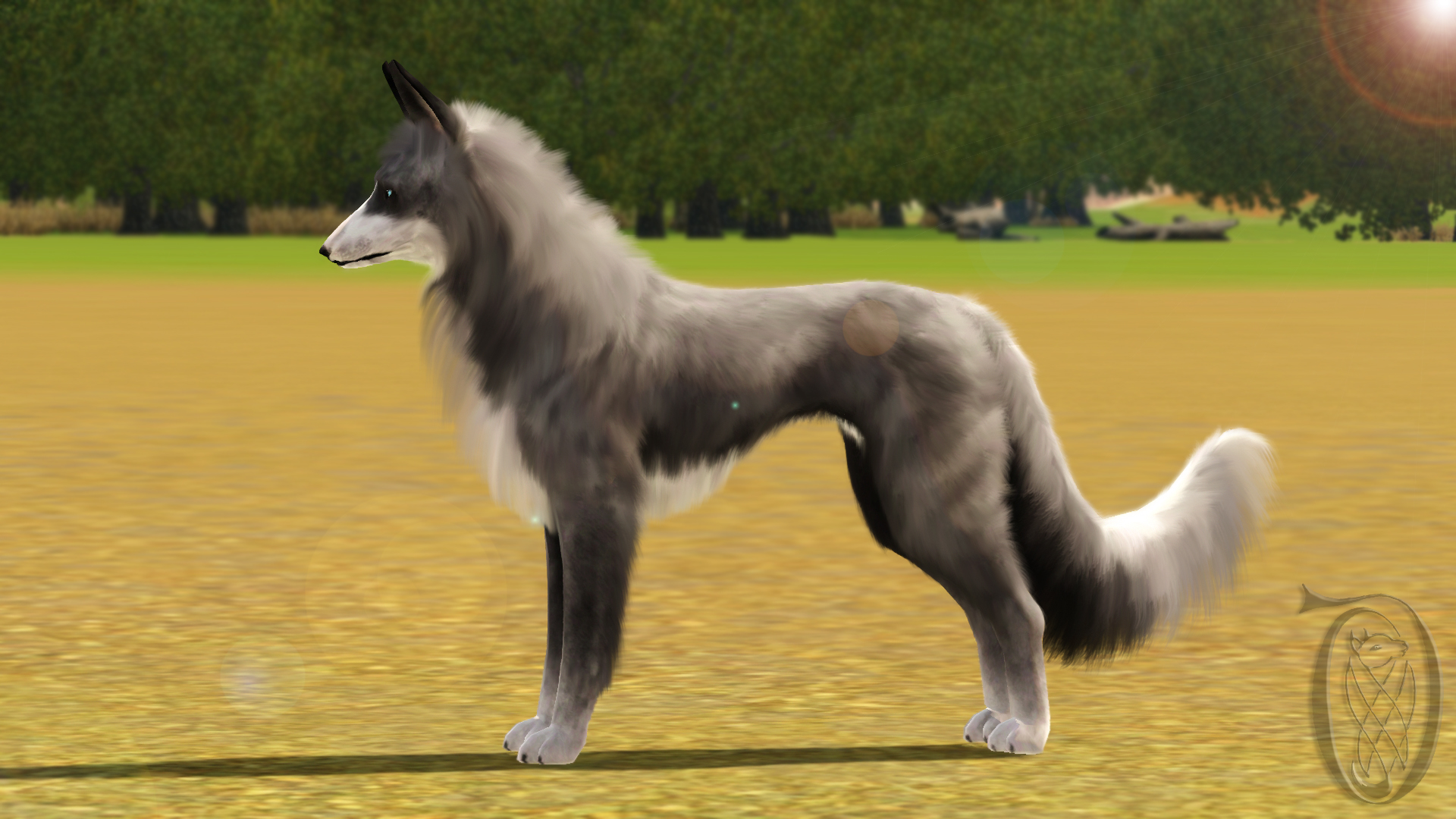 Pin images blue merle border collie dekreu reu wallpaper on pinterest -  16 Sims 3 Pets Bii Ilit Krahviik By Spiritythedragon On Deviantart