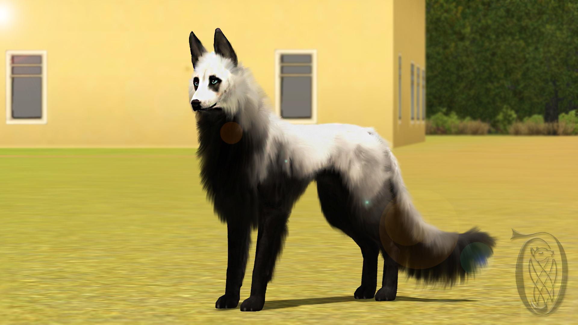 Sims  Dog Breeding Tutorial
