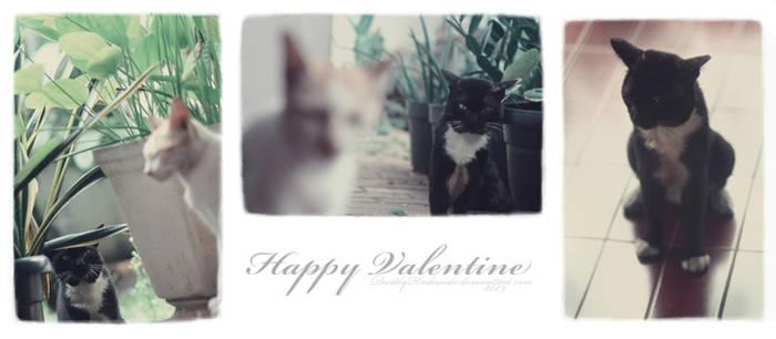 The Valentine Update