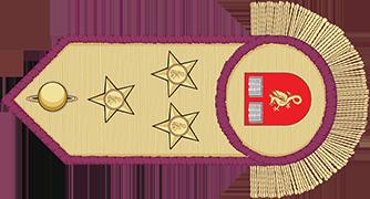 11º Curso Inicial Para Dragões (11º CID) Dragona_cavaleiro_omdp_p_by_colegioheraldicopt-d9hcta0