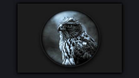 Bird of Prey for Rainmeter