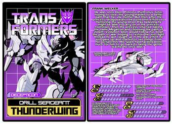 TRANSFORMERS - Decepticon Thunderwing