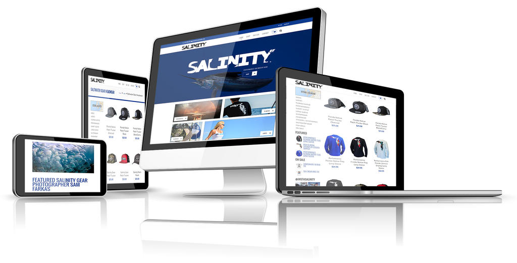 Salinity Gear Responsive Web Design by slater101