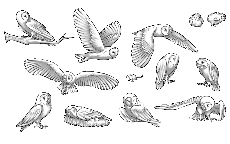 flying owl diagram