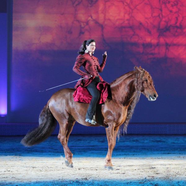 Horses Show by iAiisha