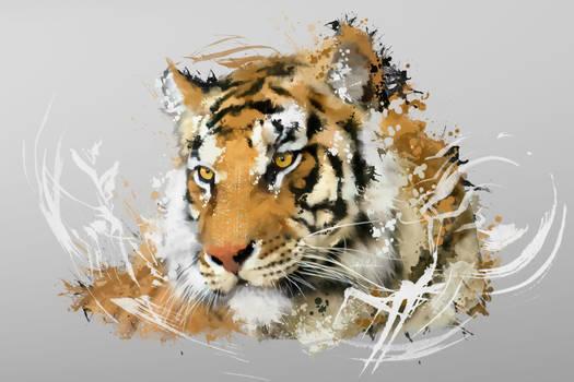 Distant Tiger