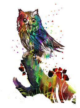 Pride Owl