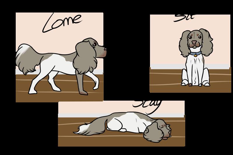 PuppyProgramPayment by Lemonegrass
