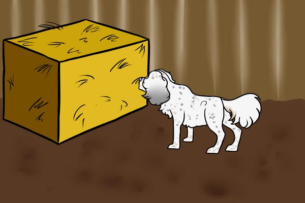 BarnHuntPayment by Lemonegrass