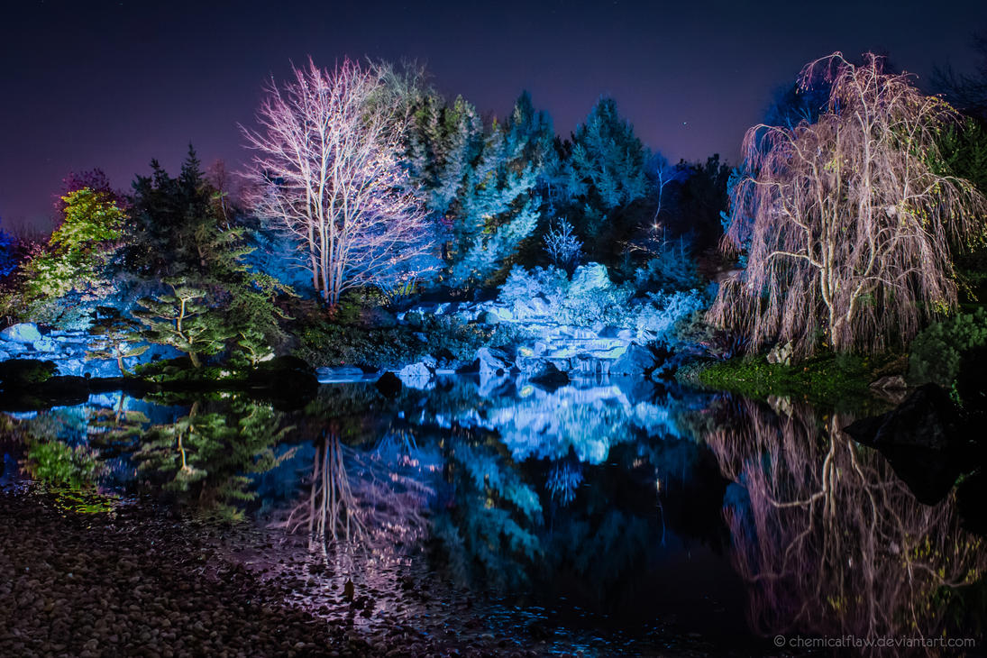 Botanical garden at night by chemicalflaw on deviantart for A night at the garden