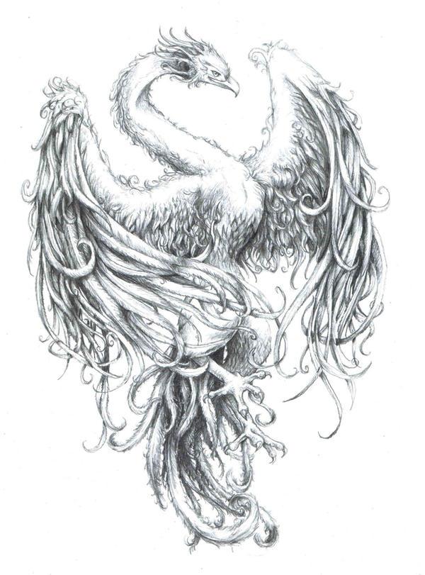 phoenix by xiphoidlies on deviantart. Black Bedroom Furniture Sets. Home Design Ideas