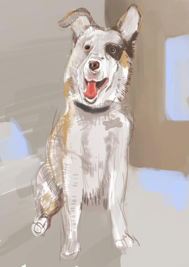 pupper sketch by mistibasnapi