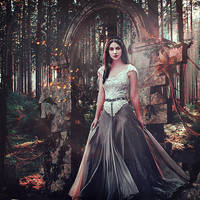 Faerie in the Woods