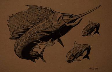 Sailfish by William-J-McVey