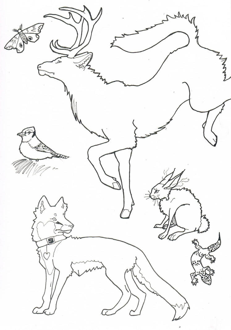 Line Drawing Of Animals : Animal lineart by mysicawolf on deviantart