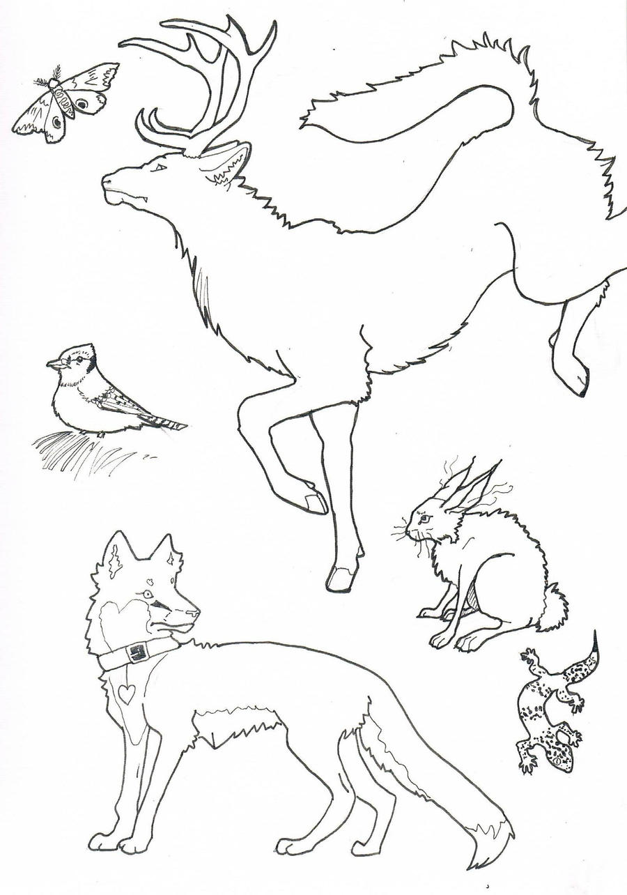 Line Drawings Animals Wildlife : Animal lineart by mysicawolf on deviantart