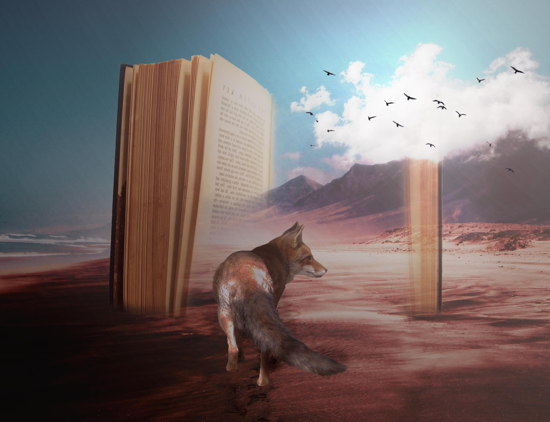 Book fantasies