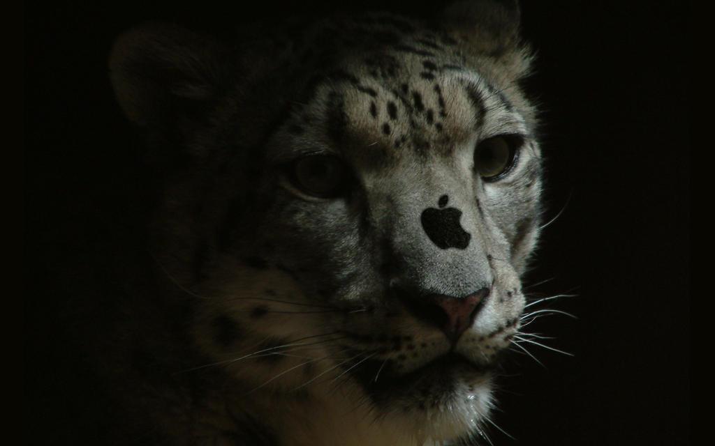Apple Leopard by ashelee00