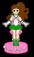 Sailor Jupiter Doll by JelloArms