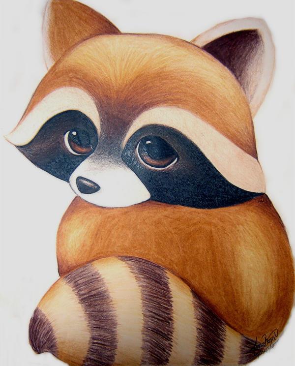 Como dibujar un mapache - Imagui Raccoon Drawing