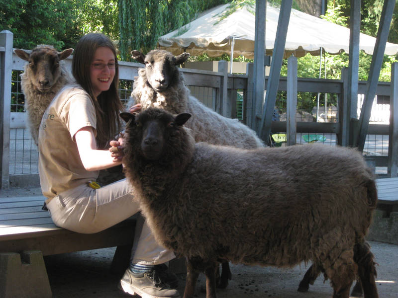 Sibtigerka-Goatgirl's Profile Picture