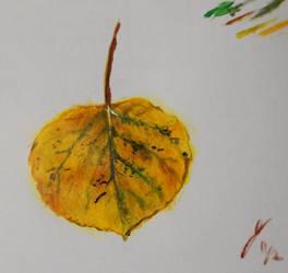 Little Leaf Sketch 1