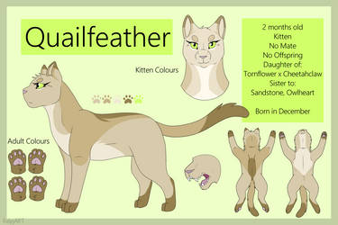 Quailfeather Reference Sheet - Official by TACOBELLABAE