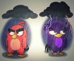 Grumpy Birds