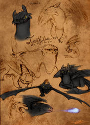Toothless ref sketches by NinGeko