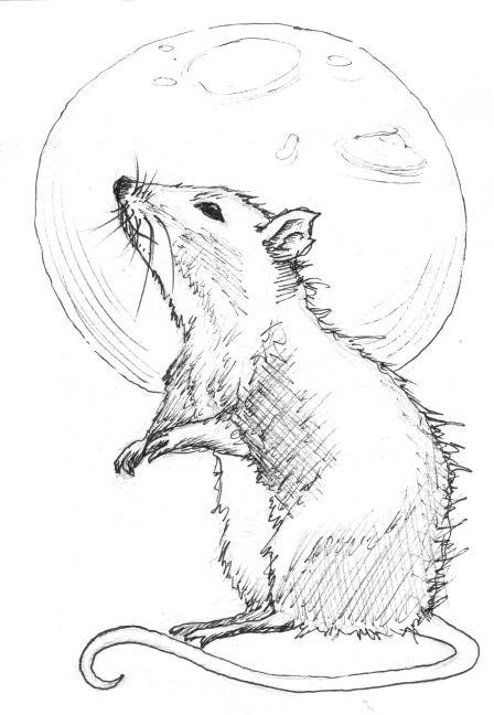 Inktober Rat by NoctiLuna