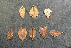 Copper and bronze leaves