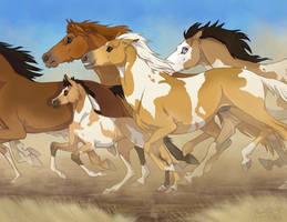 Gallop On