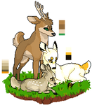 Deer A/DT
