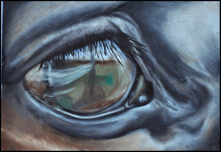 Horse Eyes Painting Horse Eye Close up Painting