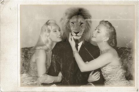 I want hug a lion by lilgreenbutton