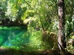 Blue Springs State Park, FL 3