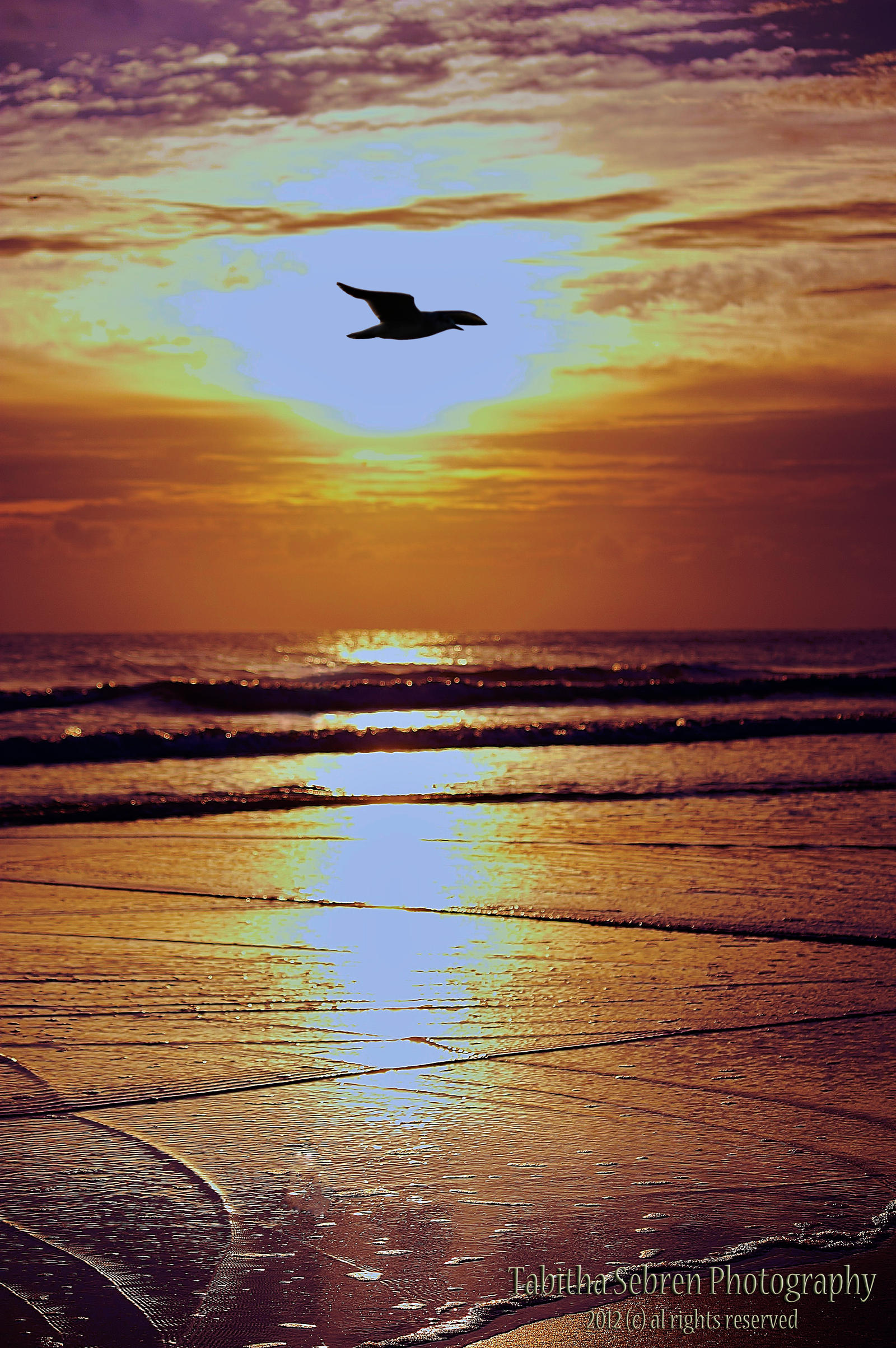Daytona Beach Sunrise by TabithaS-Photography