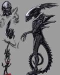 Alien - predator