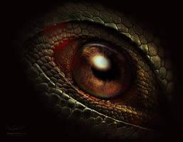 Dragon s eye by Vitaly-Sokol