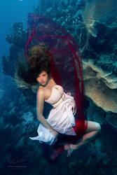 Underwater Dace. Fashionable