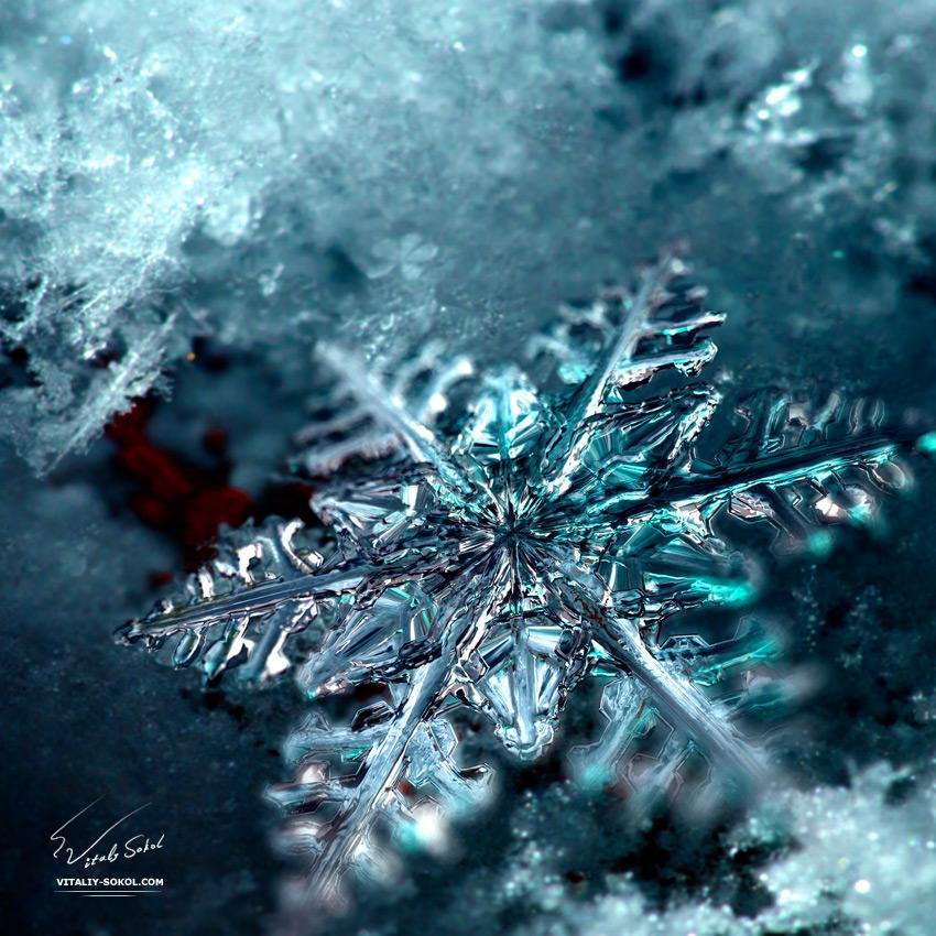 Happy  New Year by Vitaly-Sokol