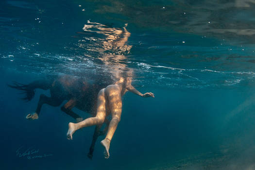 Horse Underwater by Vitaly-Sokol
