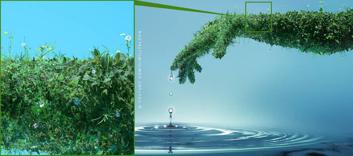 Nature and Water concept