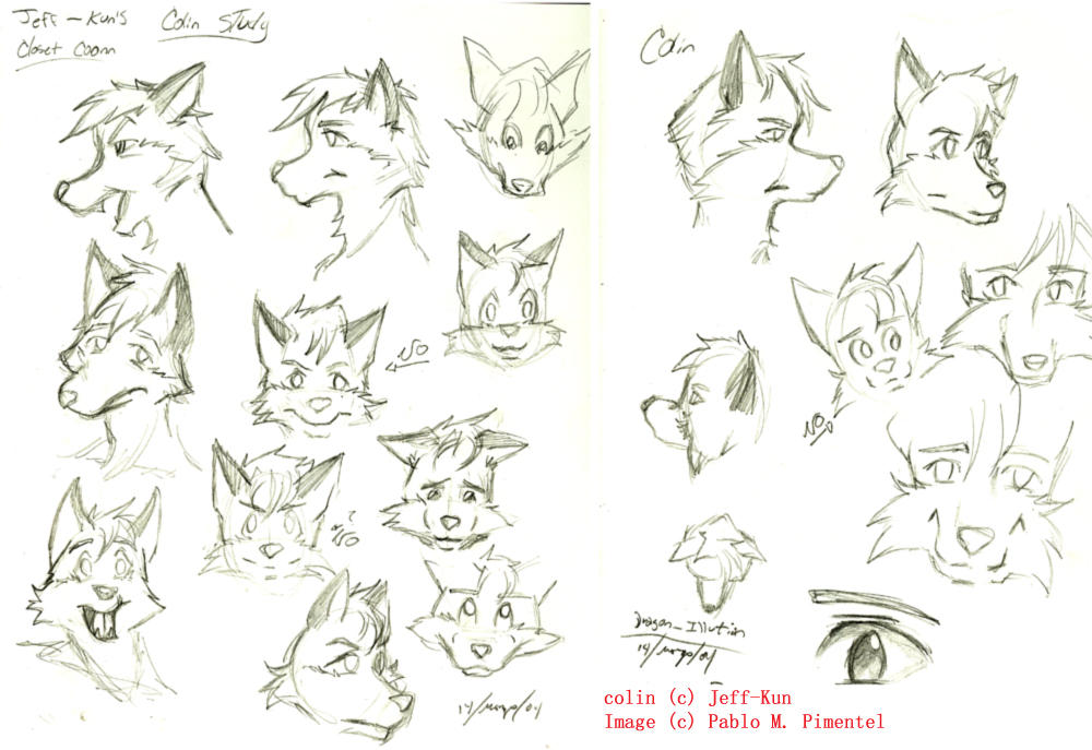 Closet Coon Colin Sketches By Dragon Illution ...