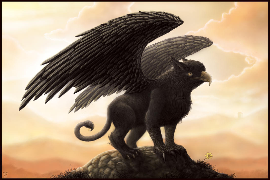 The black griffin by jared1481 on deviantart for The griffin