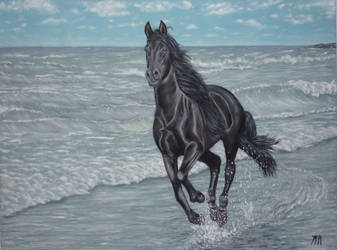 Caballo negro en la playa/Black horse on the beach by YamTorresIlustrador