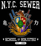 NYC Sewer School of Ninjutsu