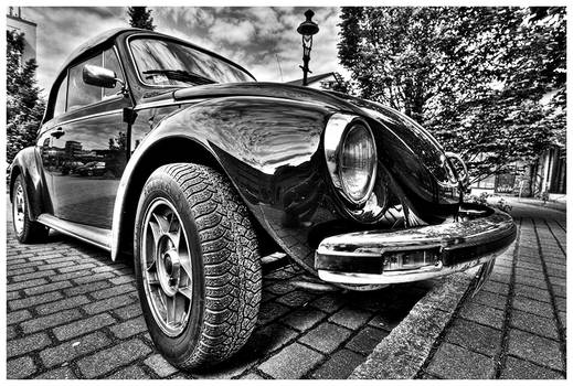 Mirror Beetle