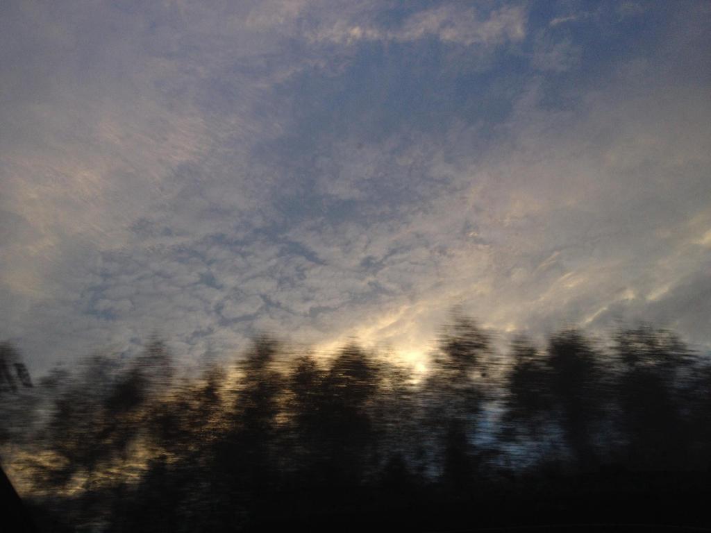 Skyfall by mjat