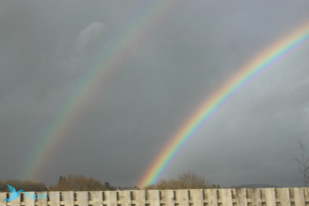 IMG_2502 - Rainbow by 0paperwings0